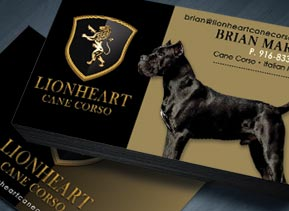 lionheart-cane-corso-business-card